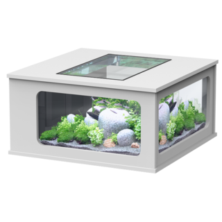 Aquatable carrée Blanche 307L - 100 x 100 cm - Aquatlantis