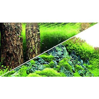 Poster Scapers Hill / Forest 120x50cm - Hobby