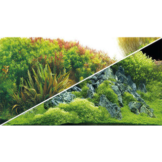 Poster Planted River / Green Rocks 60x30cm - Hobby