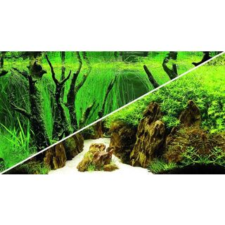 Poster Canyon / Woodland 60x30cm - Hobby