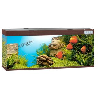 Aquarium RIO 450 LED 2x31w - BRUN