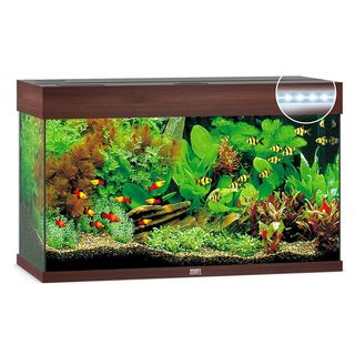 Aquarium RIO 125 LED 2x14w - BRUN