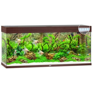 Aquarium RIO 240 LED 2x29w - BRUN
