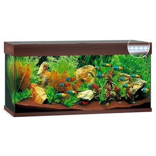 Aquarium RIO 180 LED 2x23w - BRUN