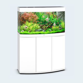 Aquarium VISION 180 LED (2x19w) BLANC  JUWEL+ MEUBLE