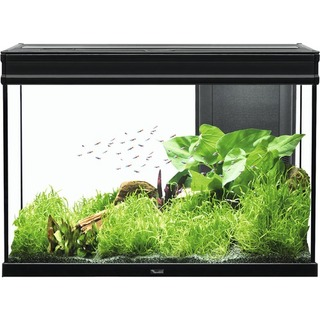Aquarium ELEGANCE Expert 80 LED 2.0 - Noir 140L