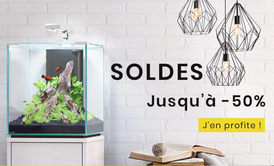 Soldes Ammannia - Aquariophilie et Aquascaping