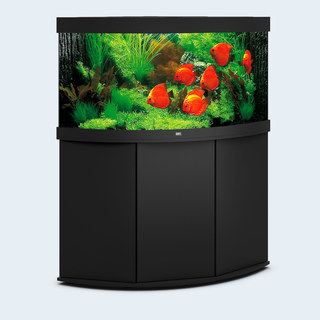 Aquarium TRIGON 350 NOIR Juwel + Meuble