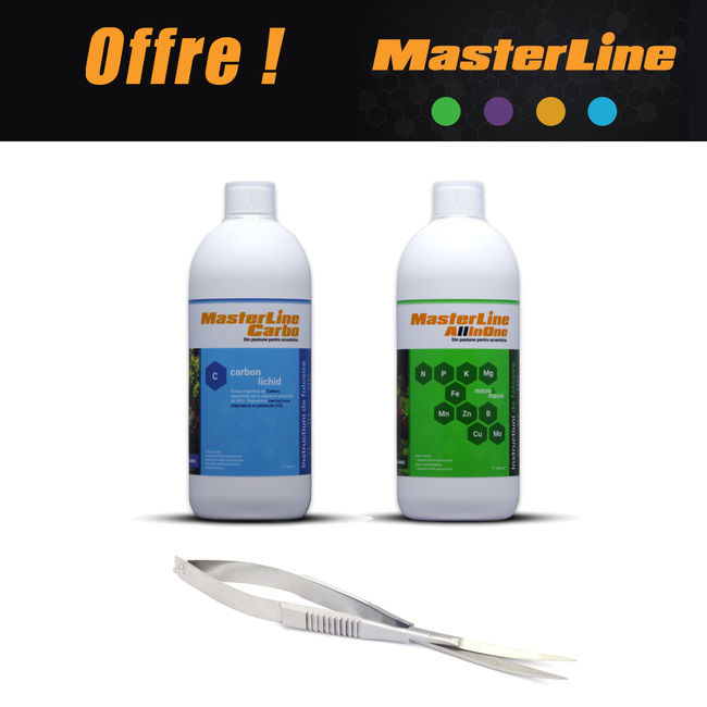 PACK MASTERLINE - All In One + Carbo (1000ml) + CISEAUX OFFERTS !